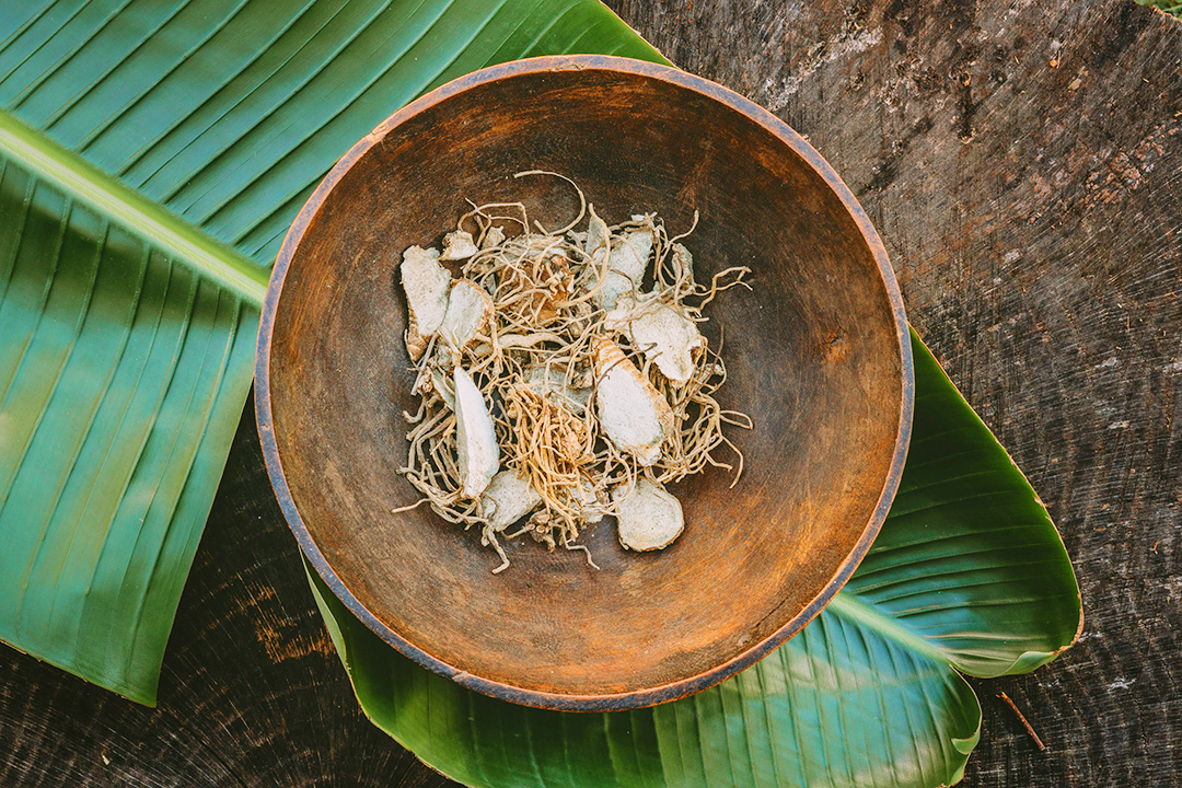Advantages of Traditional African Medicine