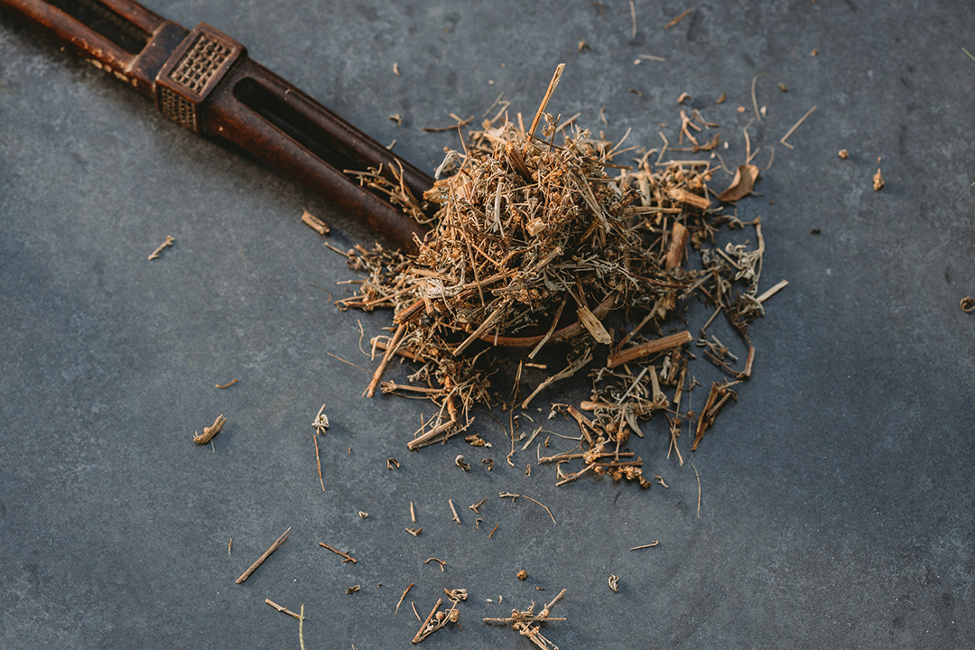 African wormwood improves lung health